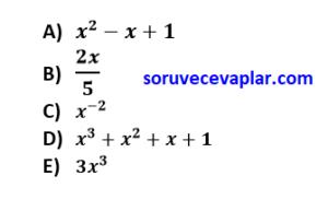 tek ve çift sayılar online test