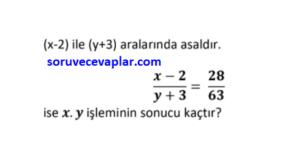 asal sayılar online test