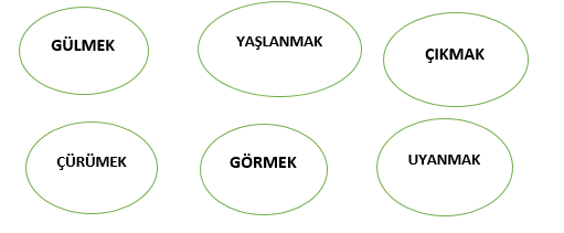 FIIL 3 7. Sınıf Türkçe Fiiller Test Çöz - 7. Sınıf Eylemler