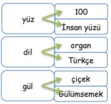 es sesli 4. Sınıf Türkçe Eş Sesli Kelimeler Test Çöz