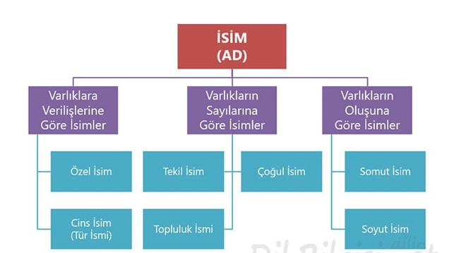 isim 4. Sınıf Türkçe Ad Test Çöz - 4. Sınıf isim testi