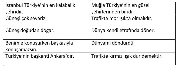 nsnel2 4. Sınıf Türkçe Öznel ve Nesnel Cümleler Test Çöz