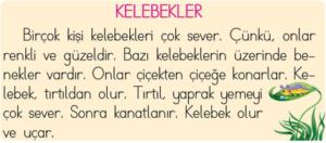 okudugunu anlama 3 2. Sınıf Türkçe Okuduğunu Anlama Test Çöz