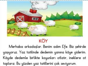 okudugunu anlama 9 2. Sınıf Türkçe Okuduğunu Anlama Test Çöz