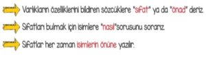sifatlar 5 2. Sınıf Türkçe Sıfatlar Test Çöz