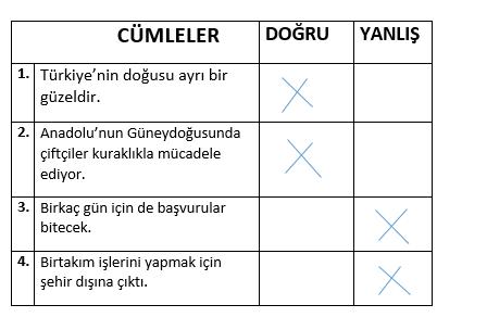 yazim kurallari 2 1 7. Sınıf Türkçe Yazım Kuralları Test Çöz