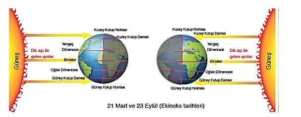 fen 2021 LGS Fen Bilimleri Mevsimler ve İklim Test Çöz