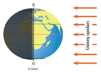 mevsimler 6 2021 LGS Fen Bilimleri Mevsimlerin Oluşumu Test Çöz