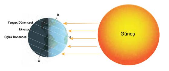 mevsimler 2021 LGS Fen Bilimleri Mevsimlerin Oluşumu Test Çöz
