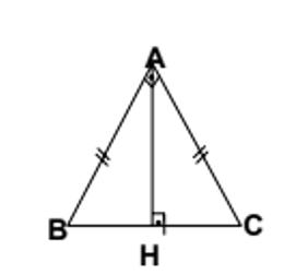 ucgenler 6 2021 LGS Matematik Üçgenler Testi Çöz