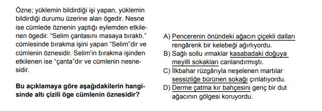 2020 turkce 18 2020 LGS Türkçe Soruları Çöz Online