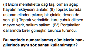 2020 turkce 2 2020 LGS Türkçe Soruları Çöz Online