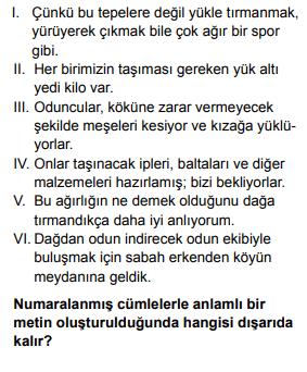 2020 turkce 8 2020 LGS Türkçe Soruları Çöz Online