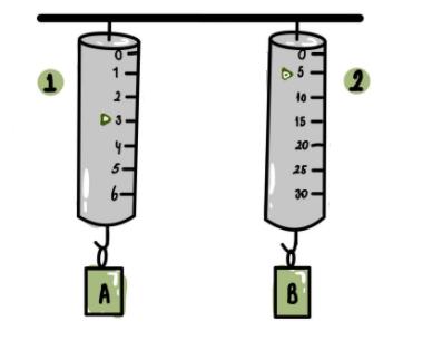 5. sinif 2 5. Sınıf Fen Bilimleri 2. Dönem 1. Yazılı Soruları Çöz (2020-2021)