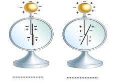 yuk 2 2021 LGS Fen Bilimleri Elektrik Yüklü Cisimler Test Çöz