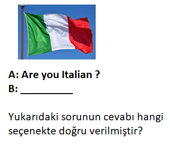 13 4 4. Sınıf İngilizce 2. Ünite Nationality Test Çöz